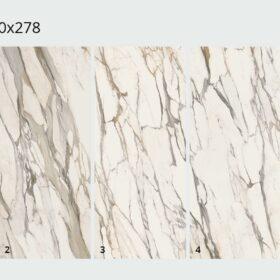Calacatta Gold 120x278